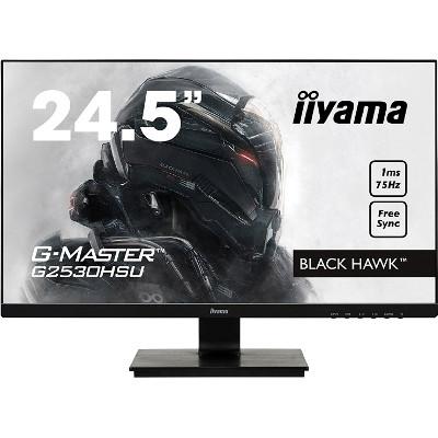 Monitor de 24,5 pulgadas iiyama G-Master Black Hawk